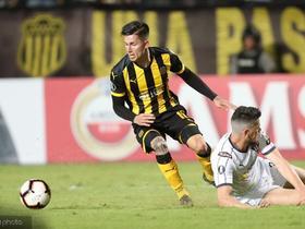 足球市场:罗马等意甲五队看上乌拉圭新星保罗-罗德里格斯